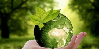 Zalety stosowania recyklingu